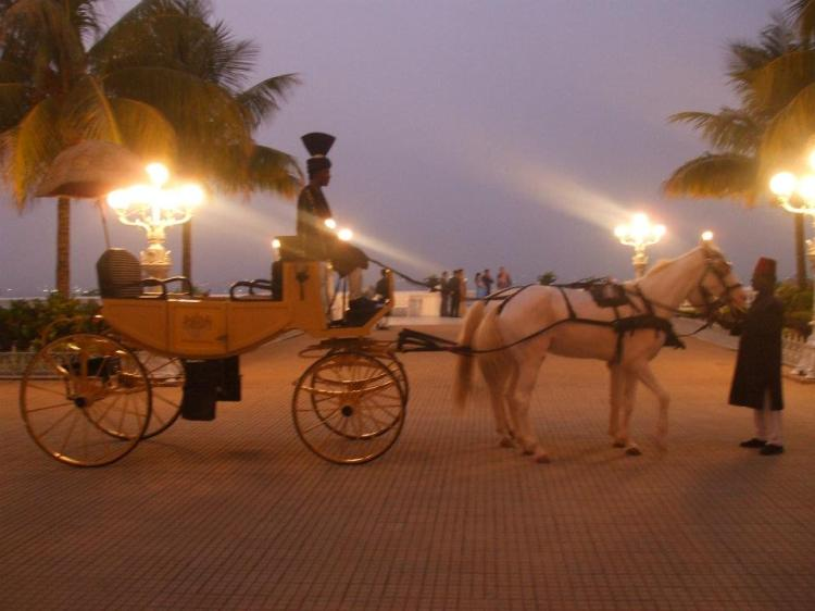 Your carriage awaits at Falaknuma Palace