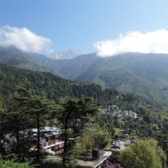 McLeod Ganj, Himachal Pradesh